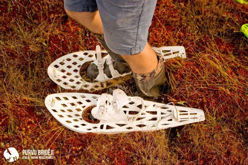 Pārgājiens ar purva kurpēm Ķemeru svētkos 2017
