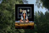 Donna Haraveja: Māksla stāstīt izdzīvošanai uz zemes