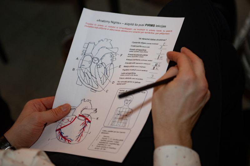 Anatomy Nights: par sirdslietām Valentīndienā